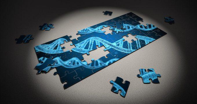La genética de la tecnología y la economía – Sintetia